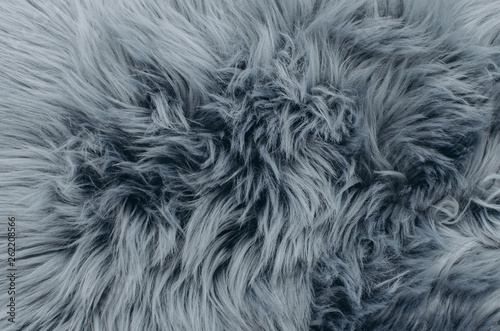 Fotografia Close up shot of abstract fur background
