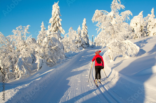 Papiers peints Glisse hiver Woman cross country skiing