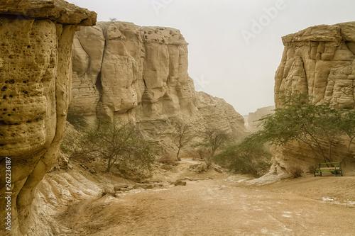Fotografie, Obraz  Chahkooh Stars Valley