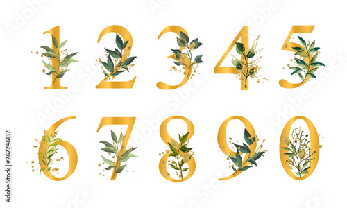 Valokuva  Golden floral numbers with green leaves and gold splatters isolated