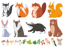 Funny Wood Animals. Wild Forest Animal, Happy Woodland Fox And Cute Squirrel Vector Cartoon Illustration Set