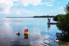 Vacationing - Boys Fishing On A Dock And People Snorkeling Near The Mangroves In  Beautiful Blue Water Under A Perfect Sky