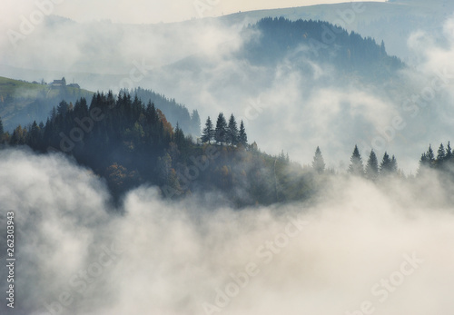 Poster Morning with fog autumn morning. foggy sunrise in the Carpathian mountains. picturesque morning