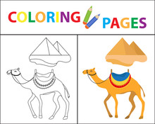 Coloring Book Page. Camel And ...
