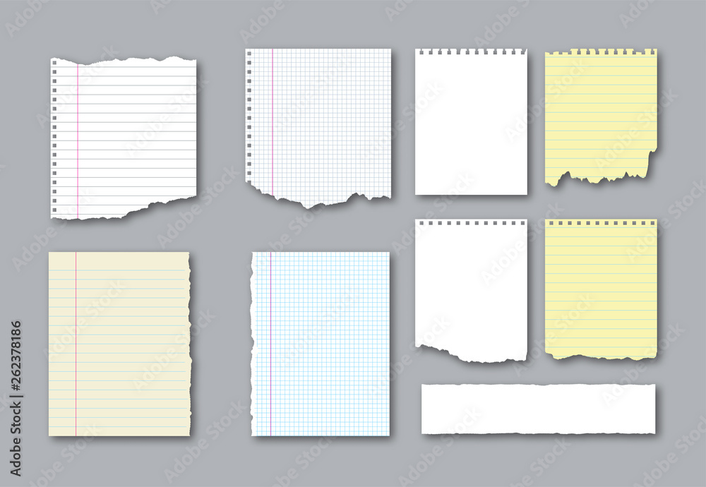 Fototapeta Set of different notebook torn pages and pieces of ripped paper for notes. Vector illustration