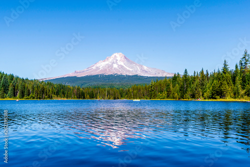 Landscape of the picturesque Trillium Lake surrounded by forest overlooking Moun Canvas Print