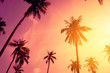 canvas print picture - Tropical palm tree with colorful bokeh sun light on sunset sky cloud abstract background.