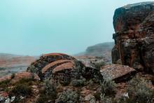Eroded Rocks Vegetation