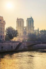 Siene river and Notre Dame de Paris in Paris, France