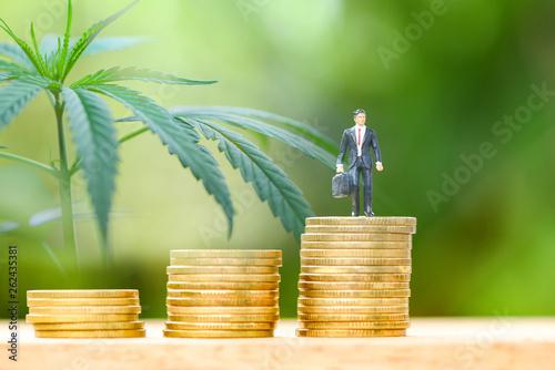 Fotografie, Tablou  Business cannabis stock leaves marijuana success market profit growth higher qui