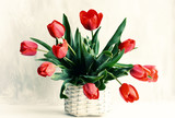 Fototapeta Tulipany - Bouquet of red tulips in a wicker vintage basket on a gray background.