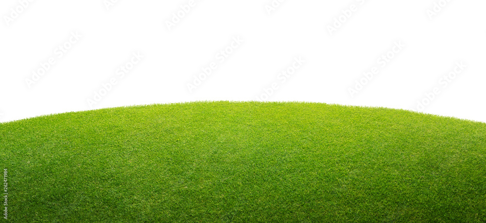 Fototapeta a green grass isolated background