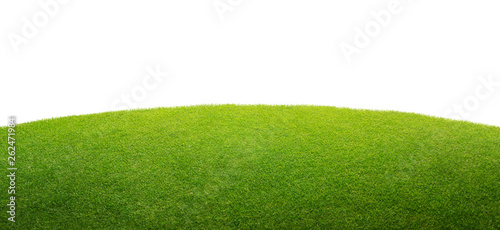 Tuinposter Gras a green grass isolated background