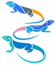 Stylized Lizards - Agamas
