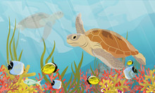 Green Sea Turtle Swimming Under Water. Coral Reef With Coral, Sea Sponges, Sand And Stones. Realistic Vector Sea Underwater Landscape