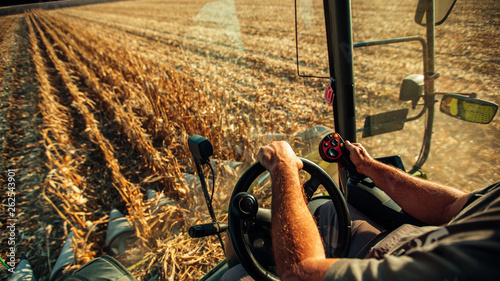 Photo Farmer in machine harvesting corn