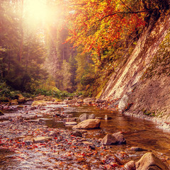 Fototapeta Vintage Beautiful autumn landscape. Small mountain river surrounded by y