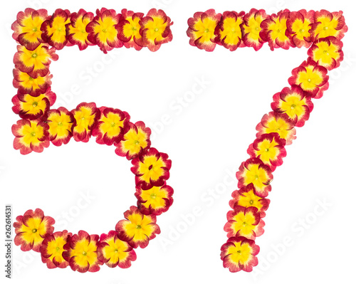 Fotografie, Obraz  Numeral 57, fifty seven, from natural flowers of primula, isolated on white back