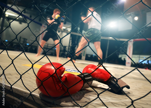 MMA fight scene with boxing gloves in foreground Canvas Print