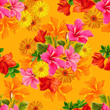 Seamless Pattern Tropical Flower In Color Brillante Style -vector