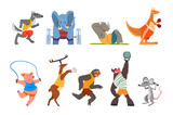 Fototapeta Fototapety na ścianę do pokoju dziecięcego - Animals doing exercise, kangaroo, hippo, wolf, elephant, pig, bull, sloth and deer in the gym, fitness and healthy lifest.yle vector Illustrations on a white background