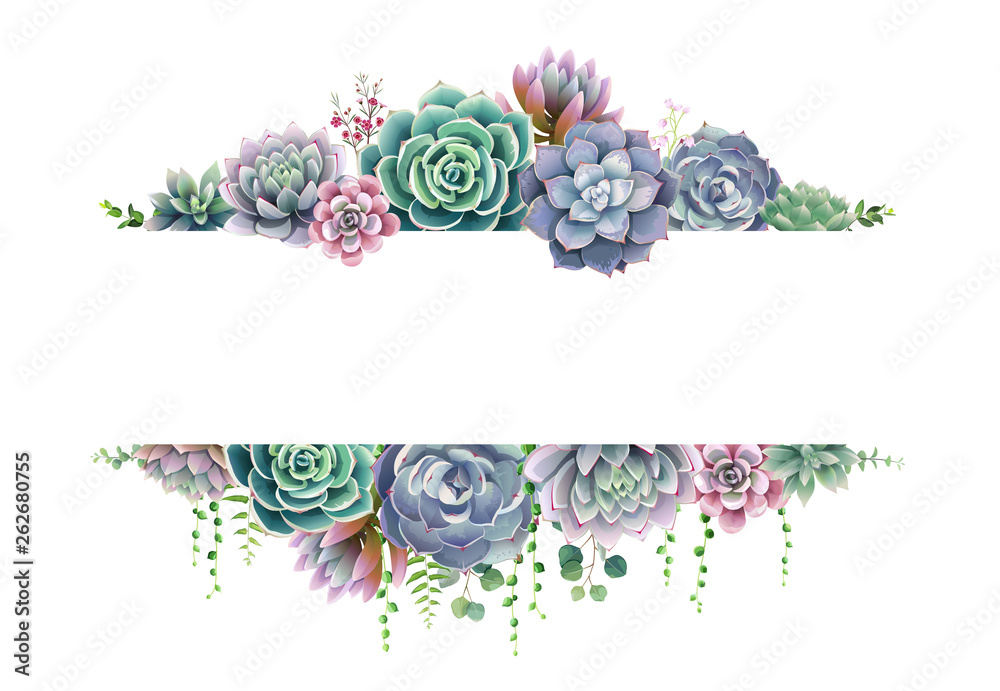 Fototapeta Greenery, succulent and branches frame border on white background. Beautiful template for invite or greeting card, banner. All elements are isolated and editable.