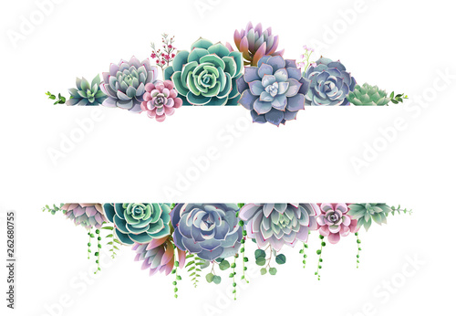 Cuadros en Lienzo Greenery, succulent and branches frame border on white background