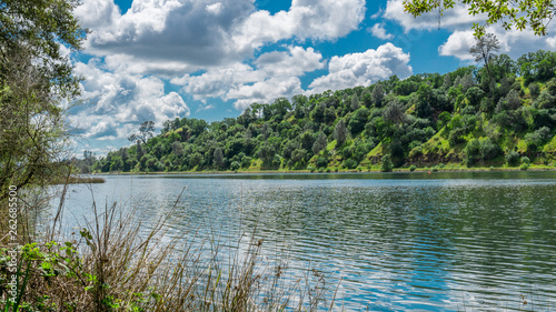 Fotografie, Obraz  River surrounded by trees on a cloudy day