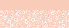 Monochrome Hand-painted Daisies And Foliage On Peach Pink Background Horizontal Vector Seamless Border. Floral Edge