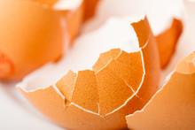 Detailed Closeup Of Empty Cracked Eggshells