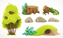 Set Of Natural Summer Objects ...
