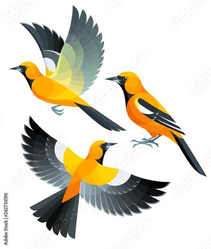Stylized Birds - Orange Oriole Wall mural