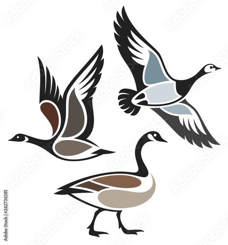Stylized Birds - Wild Geese Fototapeta