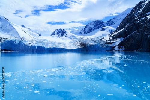 Poster Antarctica 氷河の氷 サウスジョージア島