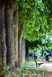 Fototapeta Do pokoju - banc park jardin promenade