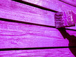 Leinwanddruck Bild - Man paints a fence in purple color. Painting the fence in ultraviolet.