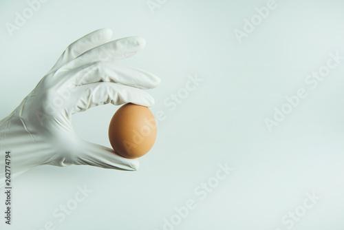 Carta da parati  Scientist in rubber gloves holding brown raw egg in hand
