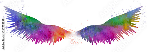 Photo sur Toile Papillons dans Grunge Beautiful magic watercolor wings, symbol of freedom