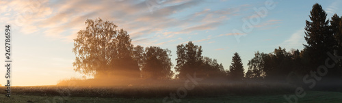 Montage in der Fensternische Schokobraun Meadow landscape with mist at dawn