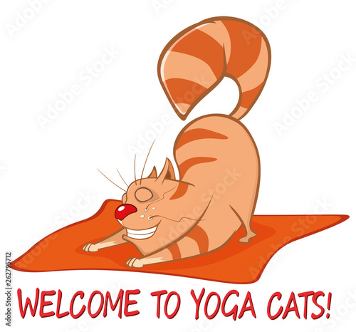 In de dag Babykamer Essential Yoga Poses for Cats. Vector Illustration of a Cute Cat. Cartoon Character