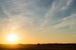 Klucz lecących żurawi (grus grus) na słonecznym niebie o zachodzie słońca. Biebrzański Park Narodowy, Polska.