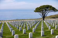 Cemetery Next To Ocean