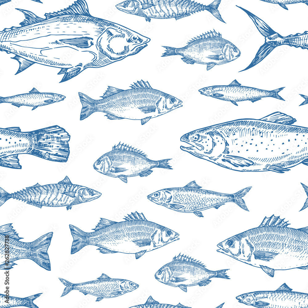 Fototapeta Hand Drawn Ocean Fish Vector Seamless Background Pattern. Anchovy, Herrings, Tuna, Dorado, Mackerel, Seabass and Salmons Sketches Card or Cover Template in Blue Color.