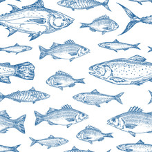 Hand Drawn Ocean Fish Vector Seamless Background Pattern. Anchovy, Herrings, Tuna, Dorado, Mackerel, Seabass And Salmons Sketches Card Or Cover Template In Blue Color.