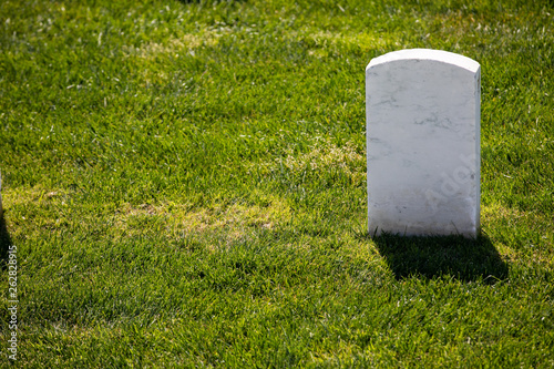 single marble tombstone Canvas Print