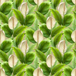 Anthurium flower. Seamless pattern design. Digital art