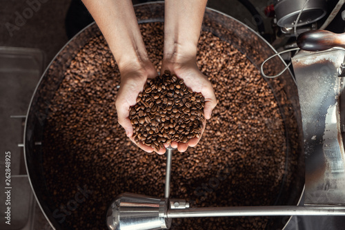 Fotografija Grains of fresh coffee roasting in hands on the background of the roaster