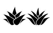 Aloe Vera Silhouette Icon Set