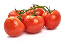 Tomato Branch. Ripe Fresh Tomatoes With Drops, Close-up, Isolated On White Background