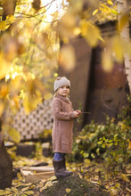 Golden Autumn And Child Play With Leaves In Park